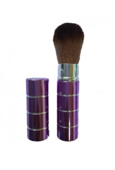 Portable Retractable Handle Makeup Brush Set Kit Pro Powder Blush Brush Purple